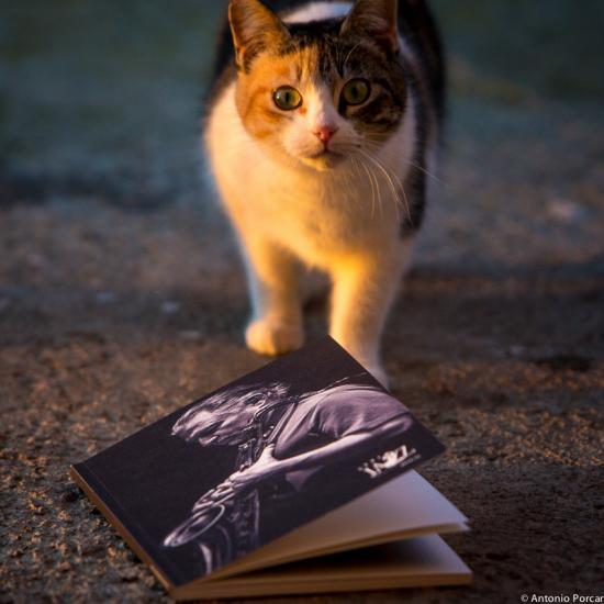 Libro Avui Jazz 2014/2015