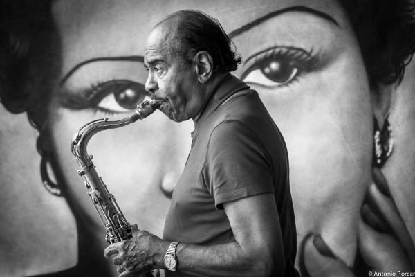 Benny Golson (2013) Photo of the Year 2014 Jazz Journalists Association JJA