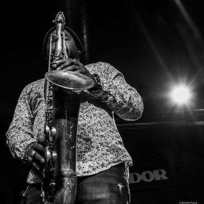 Maikel Vistel at JazzTardor 2019