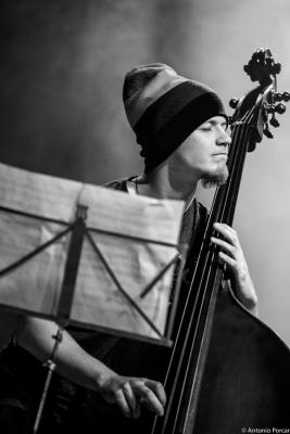 Martin Kocián (2015). Ostrich Quartet.