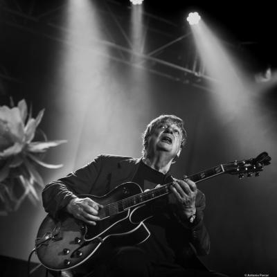 Philip Catherine at Festival de Jazz de Santander, 2021.